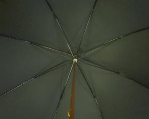 No.3 傘 かさ GENTS Brown GT19 ウルフハウンド Style アニマルヘッドハンドル