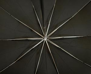 No.3 傘 折り畳み メンズ TEL1 アンブレラ Maple Crook  Style10本骨