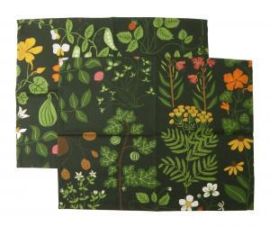 クリッパン ランチョンマット テーブル クロス スウェーデン 北欧 LEKSAND Green 2枚組