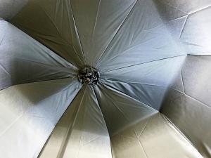 No.5 傘 かさ レディース ブラック アンブレラ Style 185N