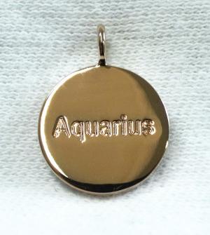 No.6 ペンダント ネックレス Zodiac 星座 水瓶座 みずがめ座 Aquarius